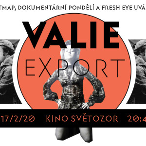 FE_valieexport_fb_coverimage