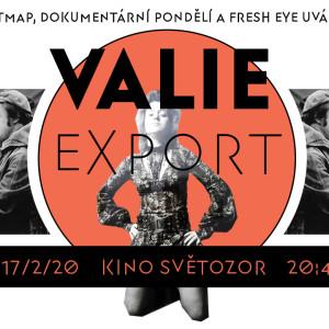 FE_valieexport_fb_coverimage